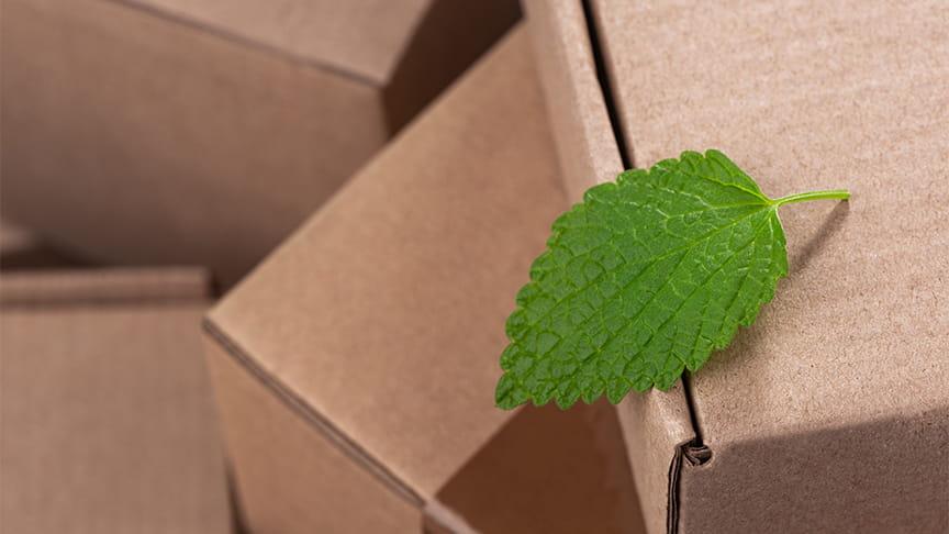 Rethinking packaging